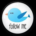 twitter button follow me icon