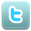 sn, social network, social, twitter icon