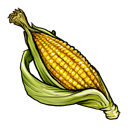 fruit, vegetable icon