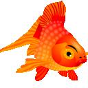 animal, fish icon
