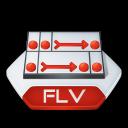 Flash, Flv icon