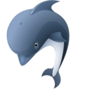 dolphin,animal icon