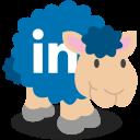 linkedin, social network, sheep icon