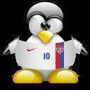 animal, penguin, usa icon