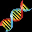Body DNA icon