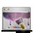 aurora, desktop, wallpaper icon