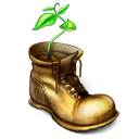 shoe, my document, file, paper, plant, boot, document icon