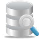 search, database icon