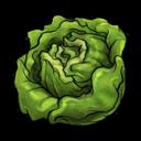 lettuce,fruit,vegetable icon