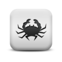animal,crab icon