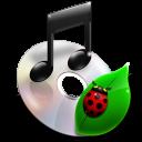 File Music icon