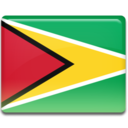 guyana,flag,country icon