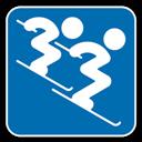 , Alpine, , Skiing icon