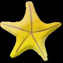 marine,star,favourite icon