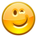 Face, Wink icon