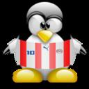 paraguay,penguin,animal icon