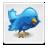 file, bird, button, twitter, blue icon