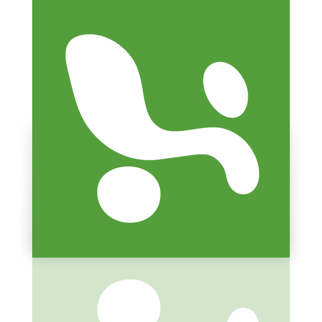 excel, mirror icon