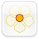 magnolia, badge icon