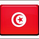 tunisia,flag,country icon