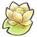 lotus, flower icon
