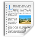new, file, document, stock, text icon
