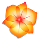 illustrator cs2 icon