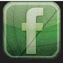 eco, green, facebook icon