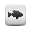 animal,fish icon
