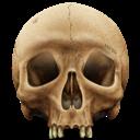 , Skull icon