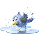 water, sn, poolbird, social, pool, twitter, animal, social network, tweet, bird icon