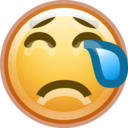 face crying icon
