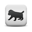 animal,dog icon