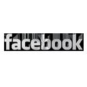 03, facebook icon