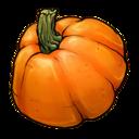 pumpkin,fruit,vegetable icon