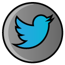 twitter, bird, social media, hayal, media, social icon