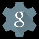Settings Google icon