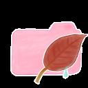 Folder Candy Leaf icon