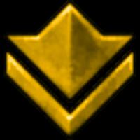 bronze icon