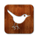 social network, twitter, social, animal, bird, sn, square icon