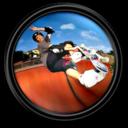 Tony Hawk s ProSkater 4 4 icon