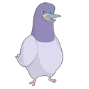 bird, animal, twitter icon