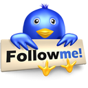 bird, twitter, symbol, social media, follow, me icon