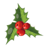 mistletoe, christmas icon