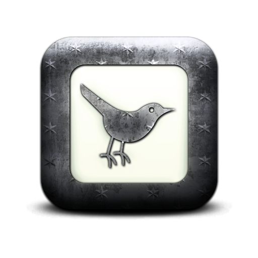 bird, sn, twitter, square, social network, social, animal icon