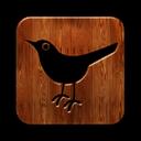 Bird, Square, Twitter icon