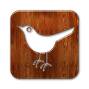 twitter, social, square, bird, sn, animal, social network icon