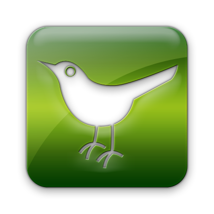 animal, social, square, sn, social network, twitter, bird icon