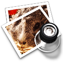 preview13 icon