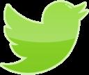 twitter, media, bird, social icon